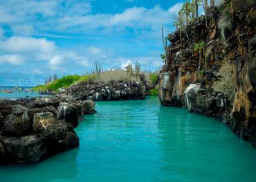 Visit Puerto Ayora on a cruise to the Galapagos Islands