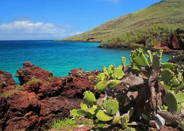 Visit Rabida on a cruise to the Galapagos Islands