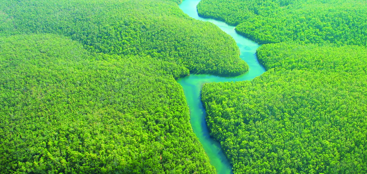 aerial shot of the Amazon, surrounded by forest